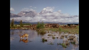 The extraordinary landscape cinematography in Wyoming